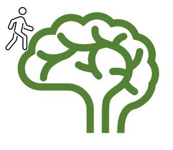 Journeys to the brain series