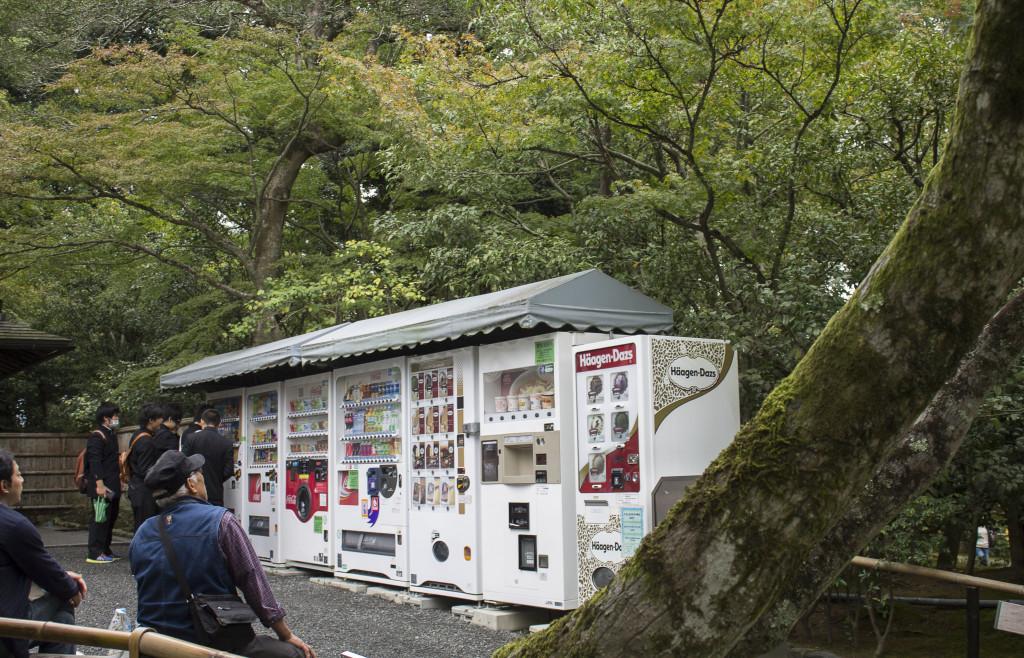Kinkakuji to Arashiyama