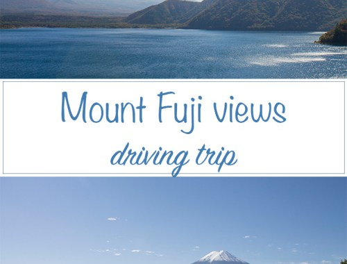 Mount Fuji Views trip