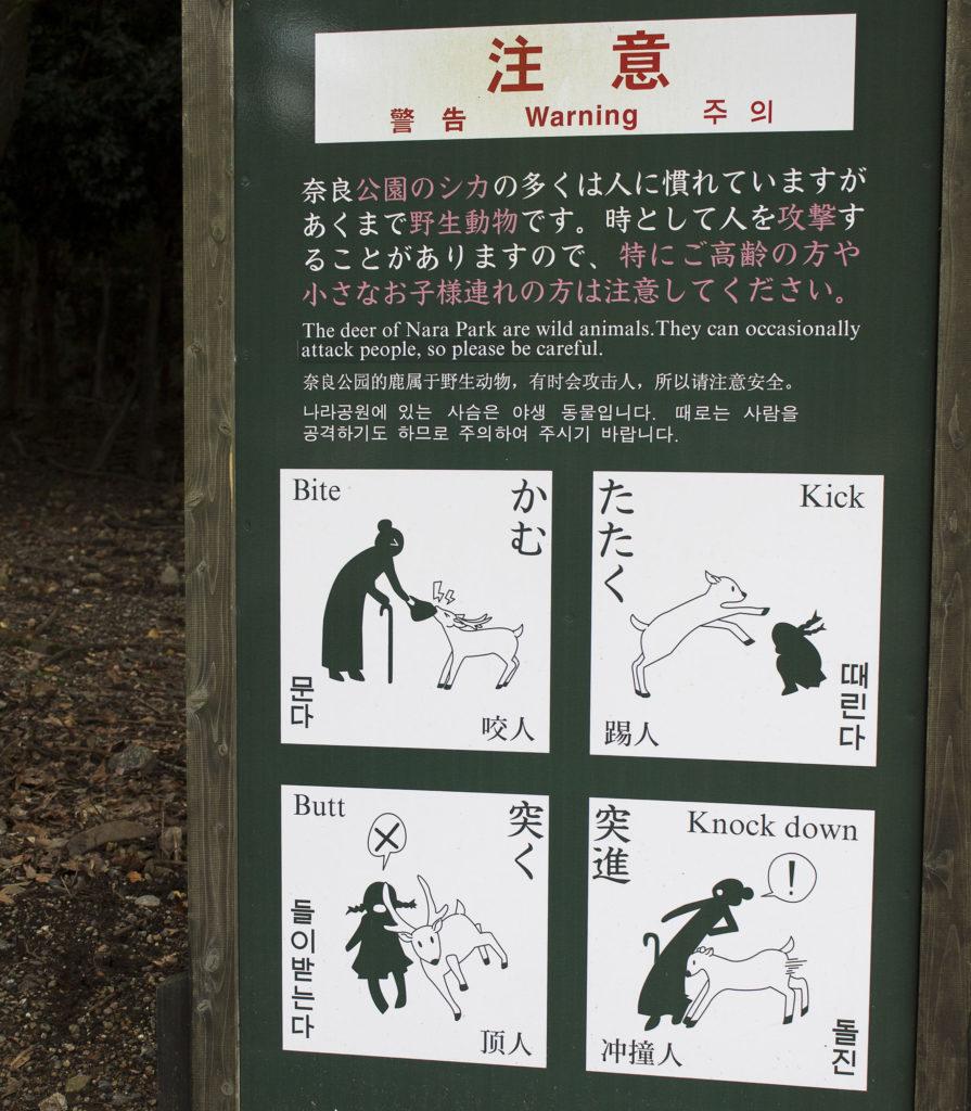 afternoon in Nara, Deer sign