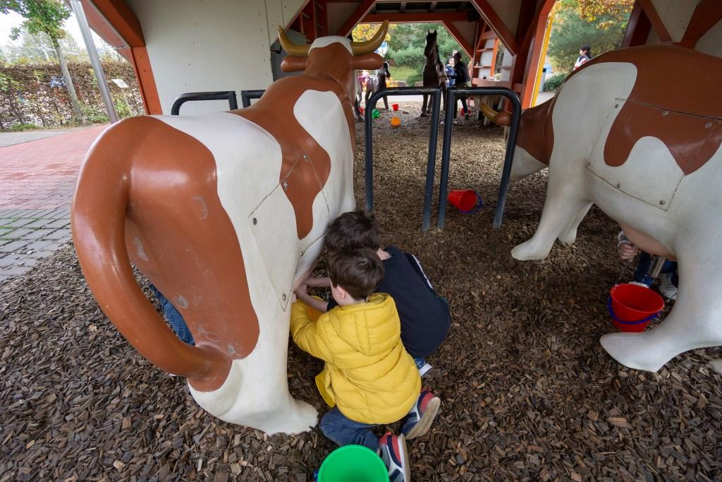 Cows at Playmobil Funpark