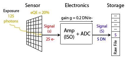 Sensor photons to DN A