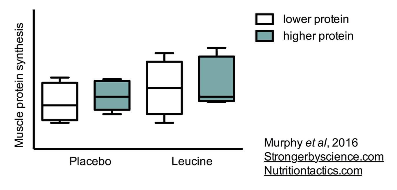Dr layne norton leucine study