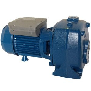 Deep Well Convertible Jet Pump. Convertible deep well jet pump.