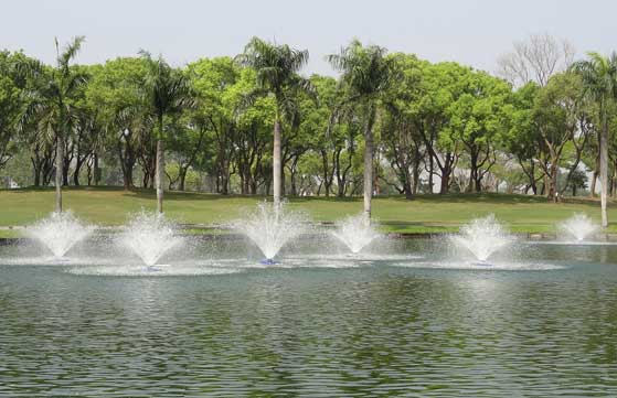 lake fountain pumps