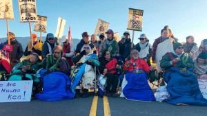 From Mauna Kea to Okinawa, 'U.S. imperialism harms our lands, waters and bodies'
