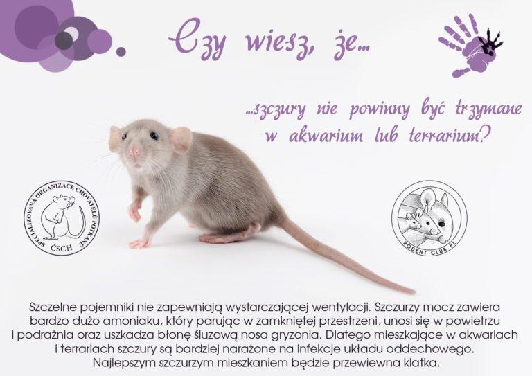Víteže-Akvárko-PL-768x543