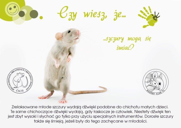 Víteže-SmíchPL-768x543