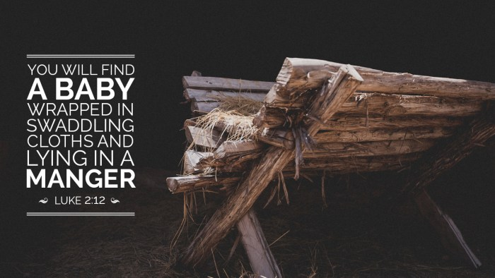 You will find a baby wrapped in swaddling cloths and lying in a manger.  -Luke 2:12