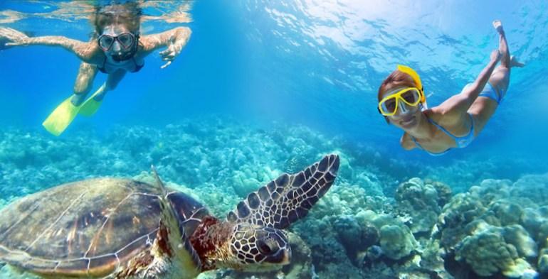 snorkeling in st thomas