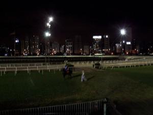 sao paulo race track