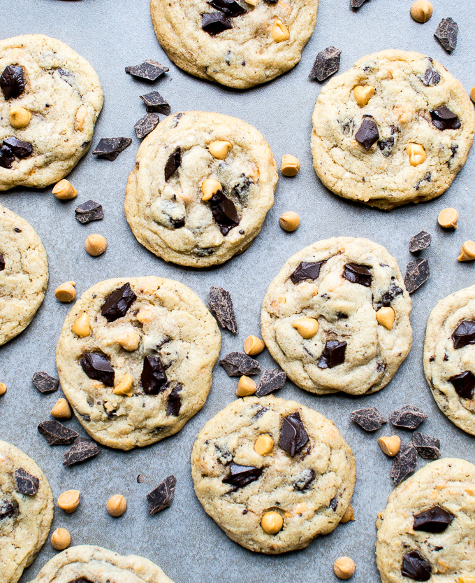 picture of several chocolate chip cookies