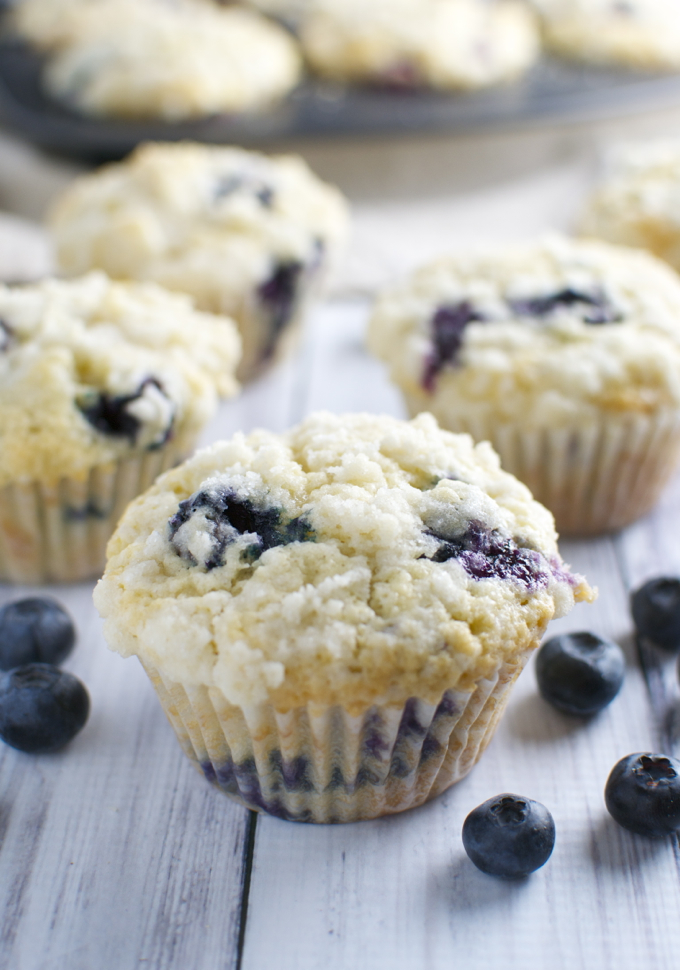 Blueberry Coconut Muffins / stuckonsweet.com