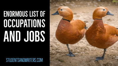 Read more about the article Enormous list of occupations and  jobs