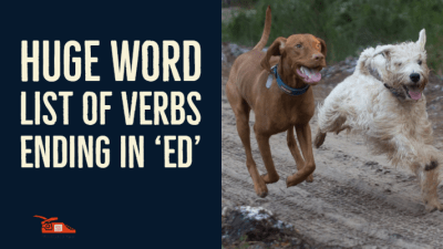 Read more about the article Huge word list of Past Tense Verbs ending in 'ed'