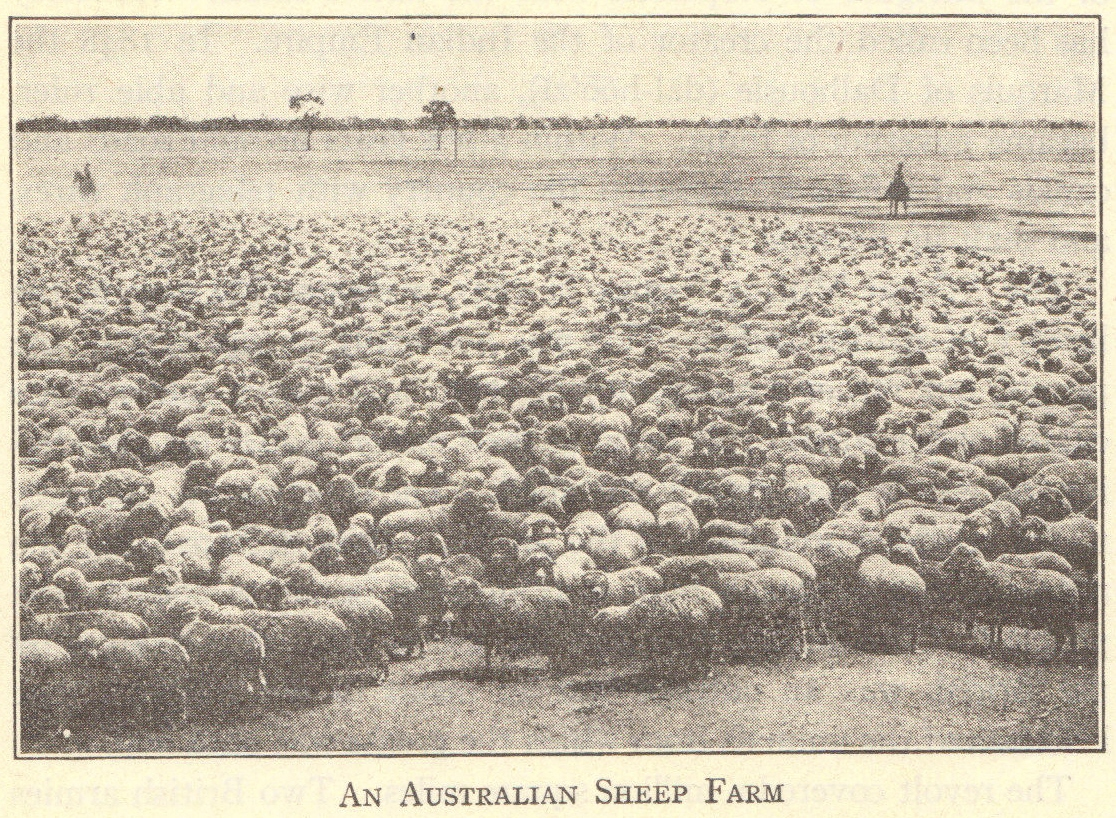 Australian Sheep Farm Circa