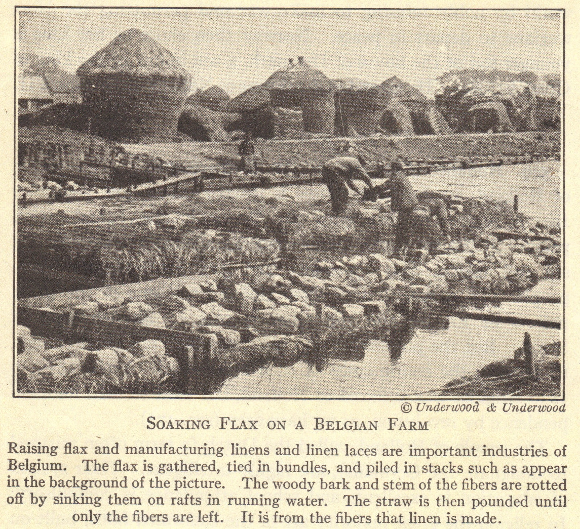Belgian Flax Farm Of Wwi