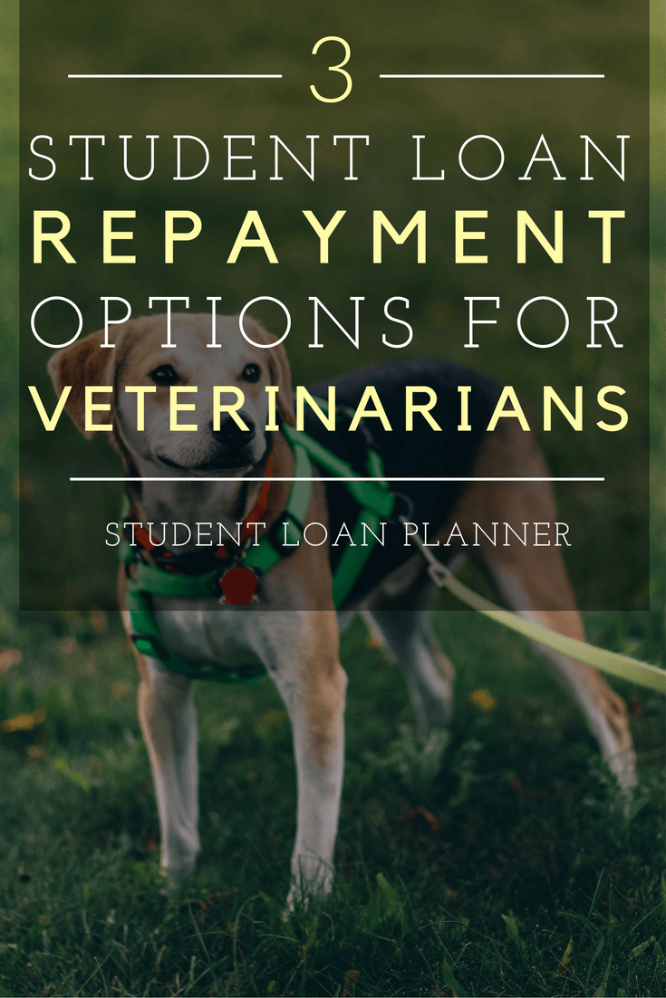 Student Loan Repayment Choices for Veterinarians