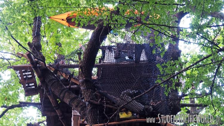 Tree House Construction