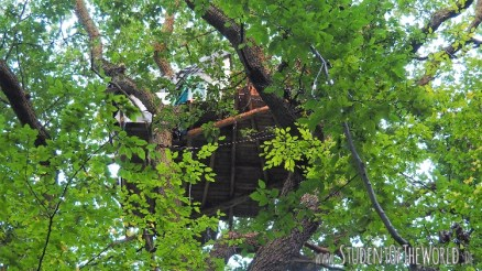 Tree House in Hambacher Forst