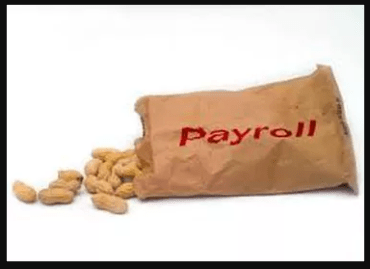 Cashew Payroll Synopsis