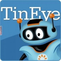 Reverse image search using TinEye