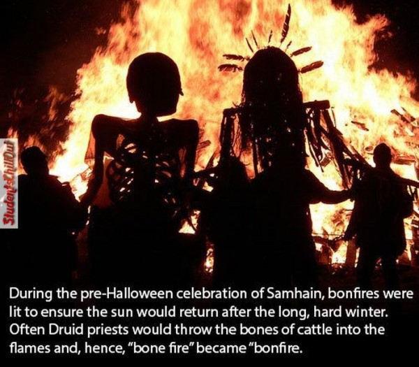 halloween fun facts 2014