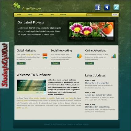 html website templates free download
