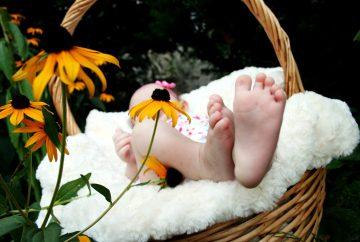Kdaj bomo pa tega dojenčka odnesli nazaj v porodnišnico?