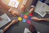 align-behaviors_connecting values_teamwork