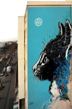 C215, Titre inconnu Street art, 2013 Angle boulevard Vincent Auriol et rue Nationale Paris 13e (75)