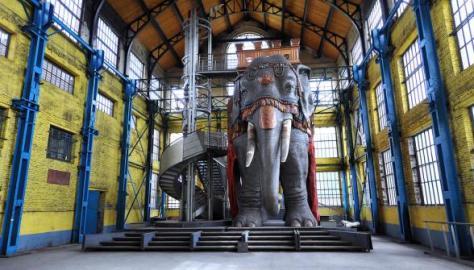 Photo de l'éléphant dans un des bâtiments désaffecté du site minier de Wallers-Arenberg (2014).