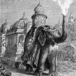 Gravure de Léon Bennett illustrant l'éléphant du roman La Maison à Vapeur de Jules Vernes (1880).
