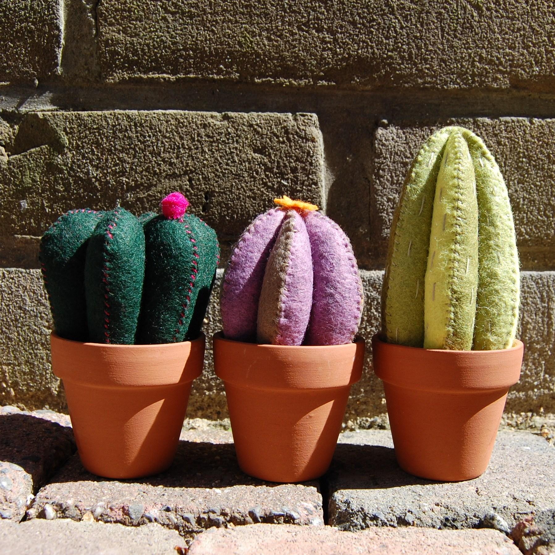 3 cactusjes van vilt op een rij door studio paars