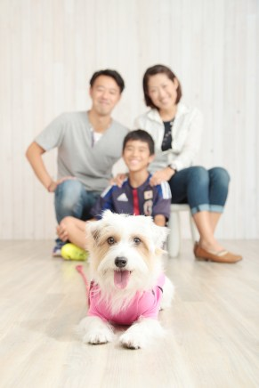 gallery-family001