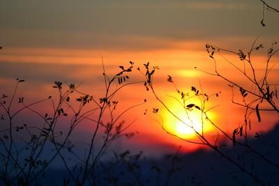Imagini pentru imagini cu amurg de soare