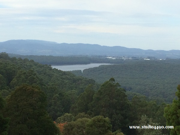 View from Kalorama Park Lookout - close up of Silvan Reservoir