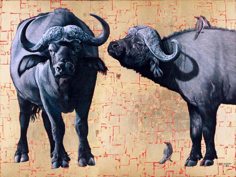 African Buffalo, Oil and Gold Leaf on Canvas, 90cm by 120cm, (2012)
