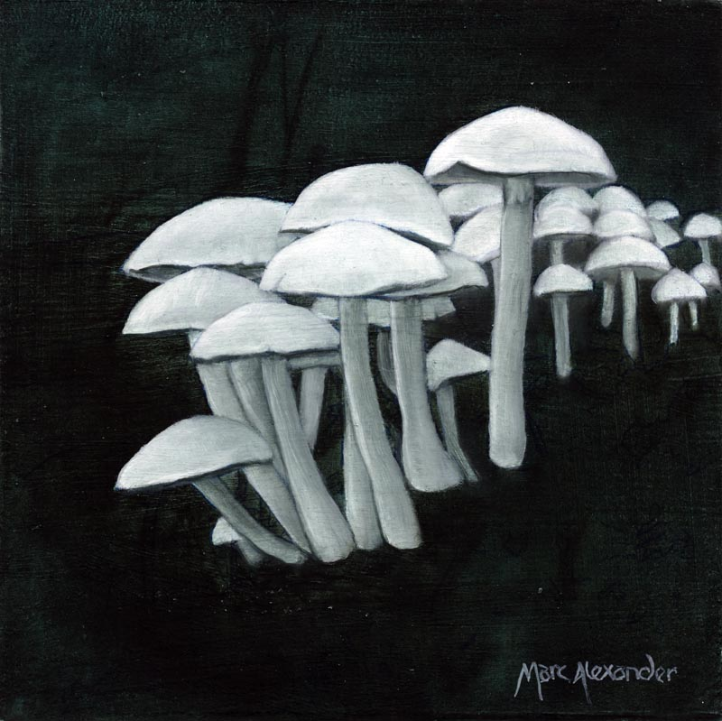 Mushrooms #II by Marc Alexander from his 'The Secret Forest' series, oil on wooden panel, 17cm by 17cm, (2014).