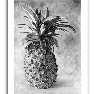 The Studio Art Gallery - Paper Print - Joy by Craig Ivor