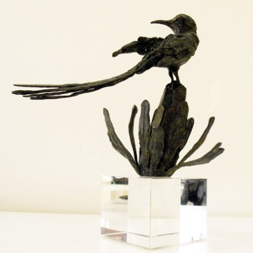 The Studio Art Gallery - Richard Gunston Sculptures - Long Tailed Cape Sugarbird Detail 4