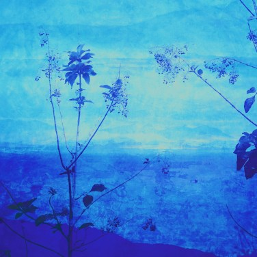 The Studio Art Gallery - Edge of Blue - Seascape II by Robyn Schoon - Digital Mixed Media