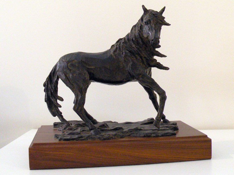 The Studio Art Gallery - Richard Gunston Sculptures - Stallion - The Wild One Detail 1