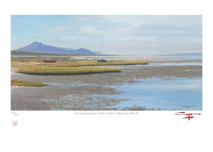 The Studio Art Gallery - Andrew Cooper - Churchhaven West Coat National Park Limited Edition Print