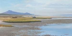Andrew Cooper   The Studio Art Gallery - Churchhaven West Coat National Park