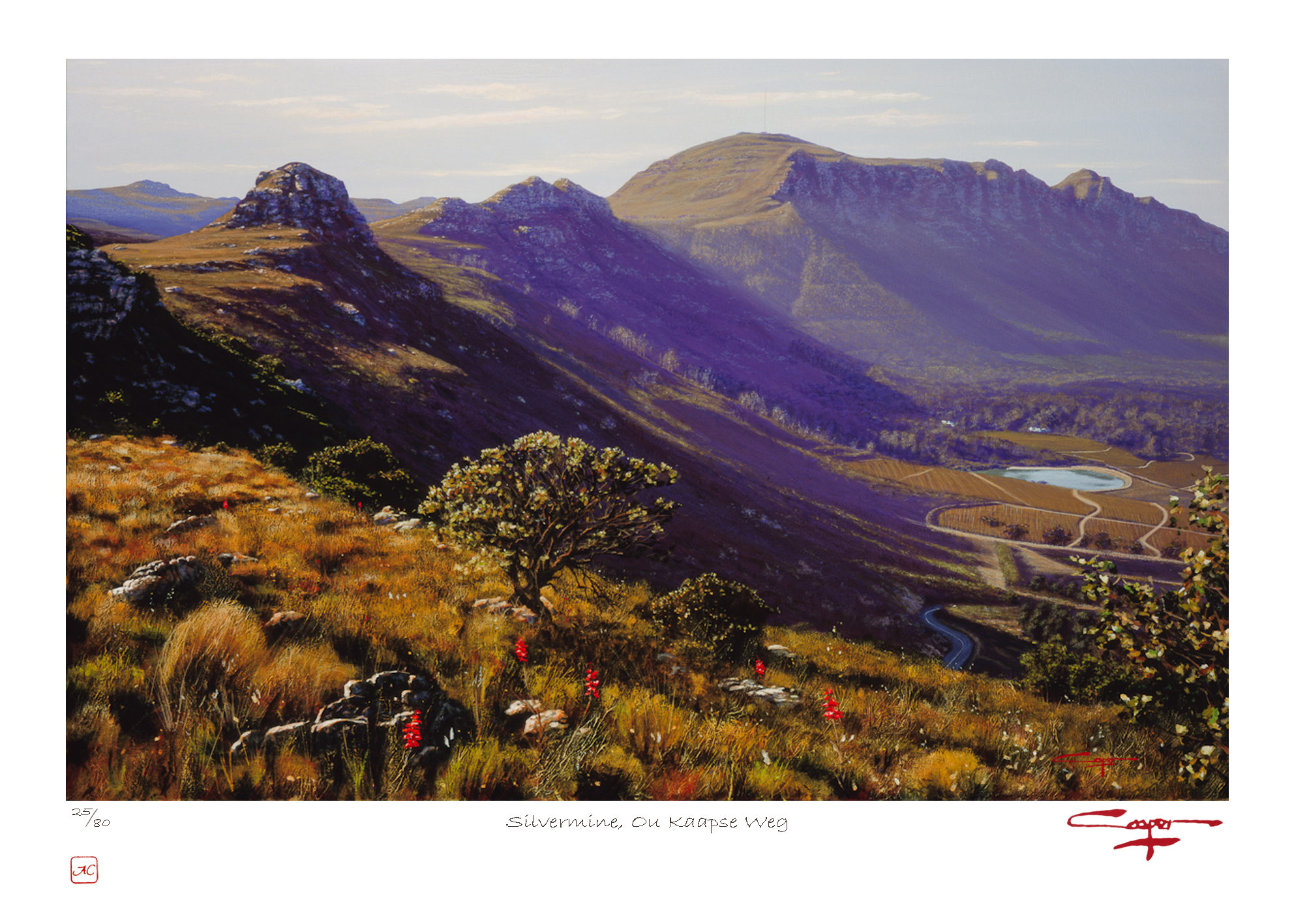 The Studio Art Gallery - Andrew Cooper - Silvermine, Ou Kaapse Weg Limited Edition Print