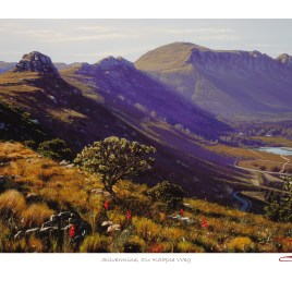 Andrew Cooper | The Studio Art Gallery - Silvermine, Ou Kaapse Weg Limited Edition Print