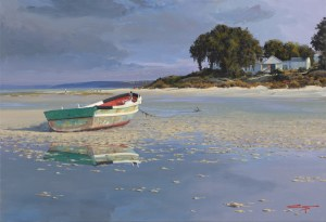 Andrew Cooper | The Studio Art Gallery - Stoffbergsfontein Churchaven Lagoon