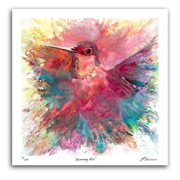 The Studio Art Gallery - Humming Bird by Yola Quinn - Archival Print on Paper