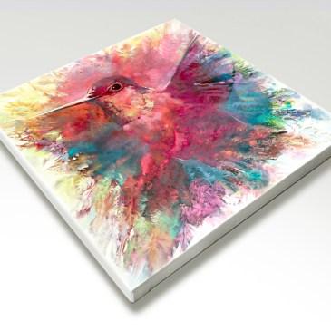 The Studio Art Gallery - Humming Bird by Yolo Quinn - Canvas Print on Stretcher